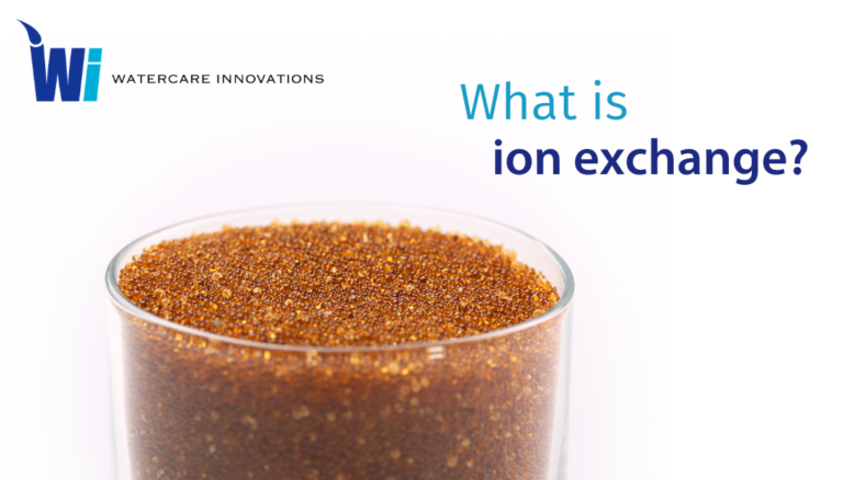 What is ion exchange?